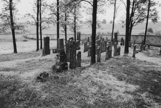 Blick auf den 1671 angelegten jüdische Friedhof von Harburg, Foto: © Volk Verlag