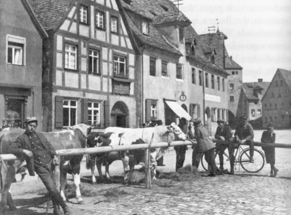 Viehmarkt am Marktplatz der mittelfränkischen Kleinstadt Lauf a. d. Pegnitz (ca. 1925)
