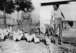 """""""Eier-Jeckes"""", wurden die deutschen Hühnerzüchter genannt. Chava Ducas, die Tochter von Meinhold Nussbaum, kümmerte sich um die Hennen"""
